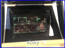 Nintendo Game and Watch panorama screen Donkey Kong Junior